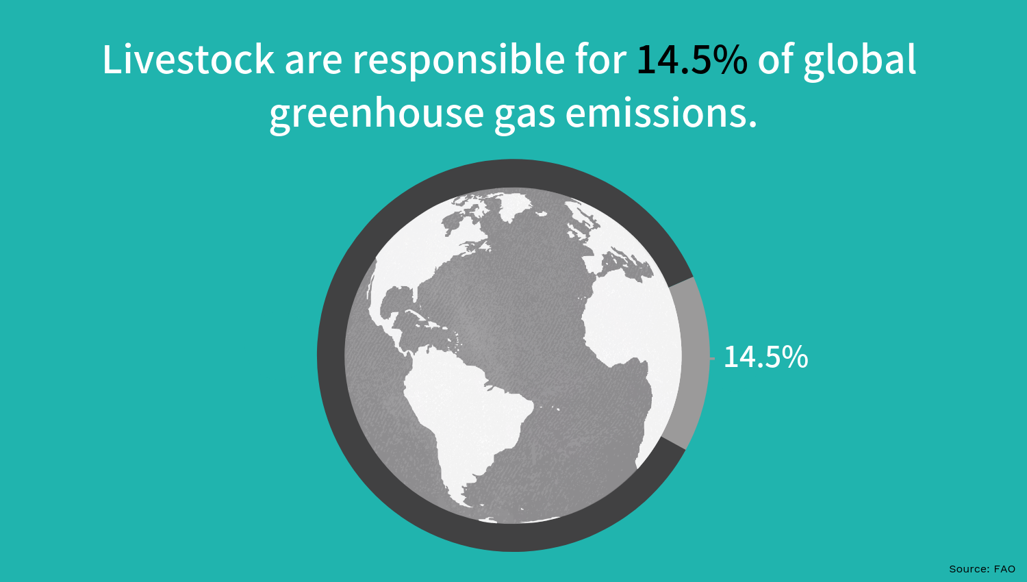 Livestock's contribution to greenhouse gases