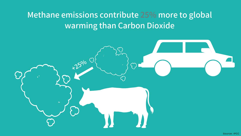 Methane emissions global warming